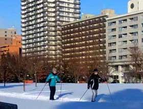 2012年1月4日歩くスキー・コース1