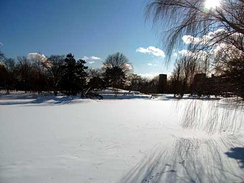 2012年1月14日菖蒲池西岸より
