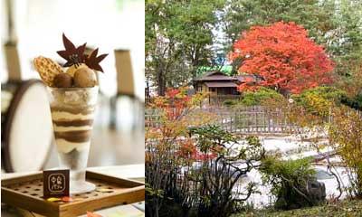 ノボテル札幌の中島パフェ・秋と紅葉の八窓庵